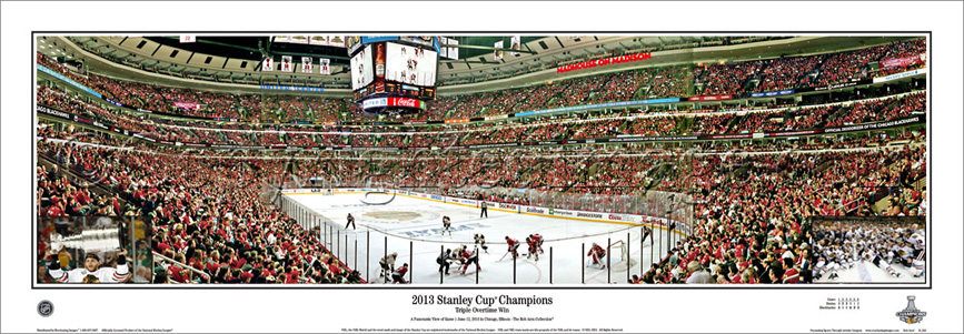 2013 Stanley Cup Champions - with inserts