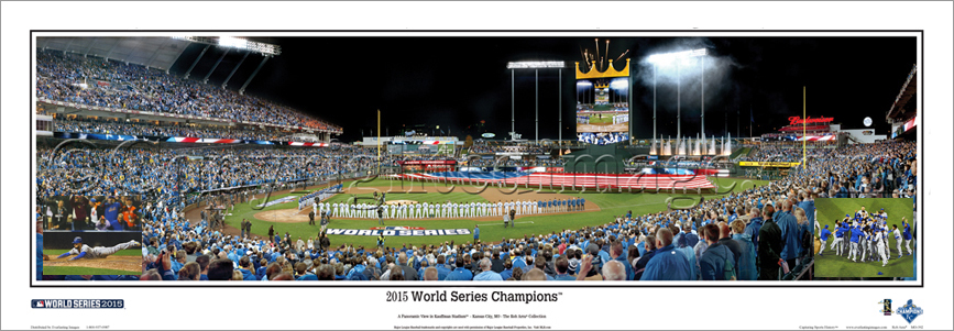 2014 World Series Champions